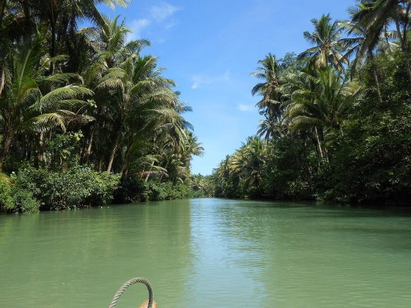 Amazon_River_aka_Maron_River_in_Pacitan_(March_2014)_-_panoramio