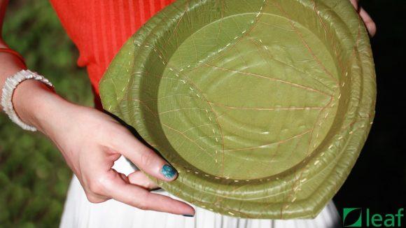 Plate Made Of Leaf (Leaf Republic)