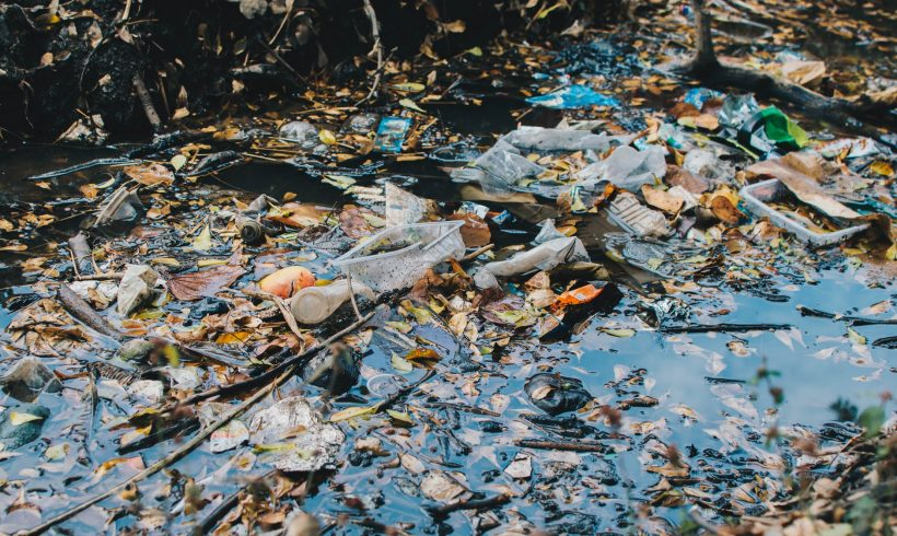 Plastic Pollution Or Climate Change? Which Is Worse?