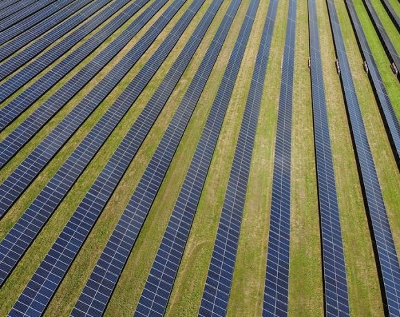 Experts Said Switching Tobacco For Solar Panel Is Happening