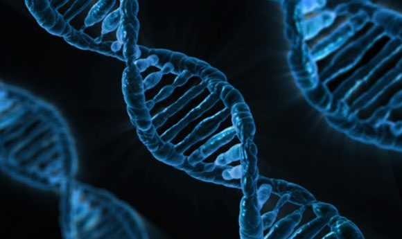 Is Biotechnology Advantageous? Let's Check About The Facts