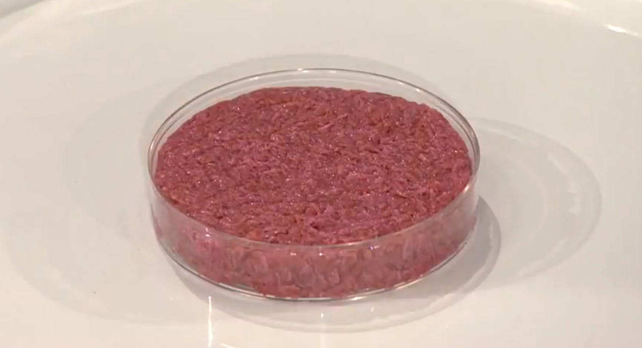 cultured meat without muscles and fat. photo by World Economic Forum wikimedia commons