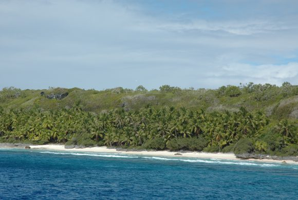 Henderson Island, The Plastic Beach We Never Wanted