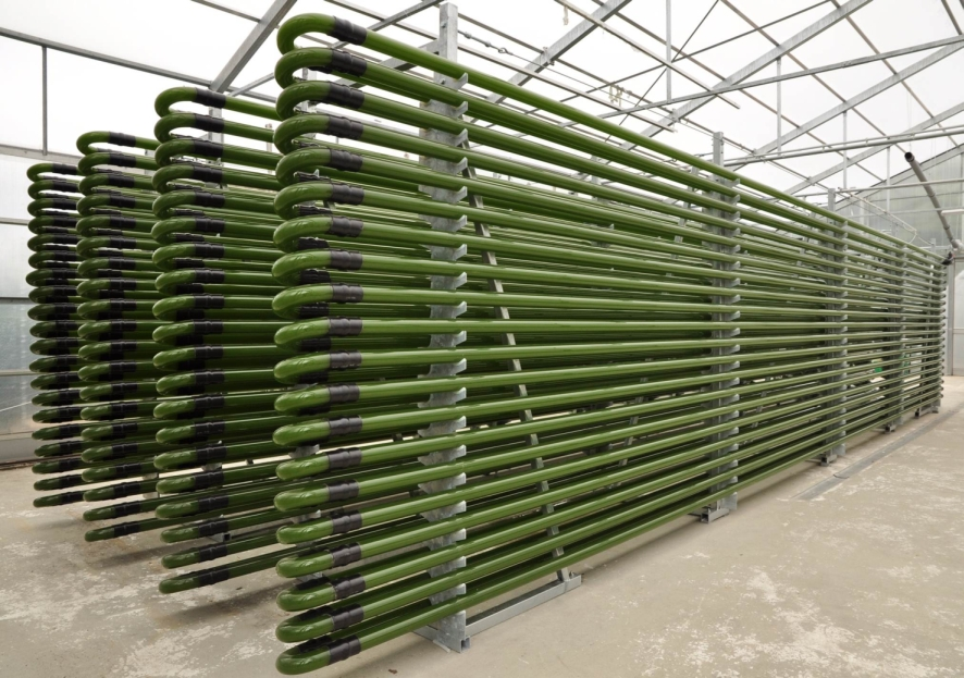 a photobioreactor to cultivate algae and other photosynthetic organisms. Photo by IGV Biotech Wikimedia Commons