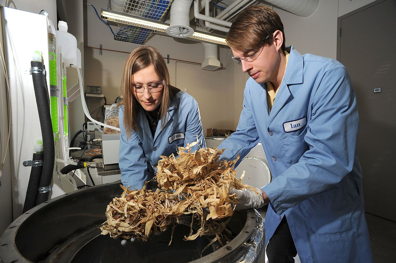Biomass processing by researchers in order to try finding ways to turn biomass into biofuels. Photo by Idaho National Laboratory Wikimedia Commons