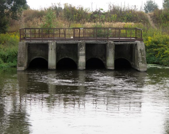 How Aquatic Environment Have To Deal With Our Sewage