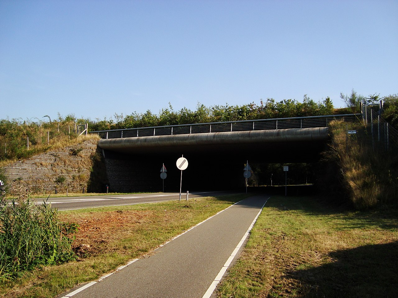 Wildlife crossing in Hilversum, the Netherlands. photo by Globe-trotter Wikimedia Commons