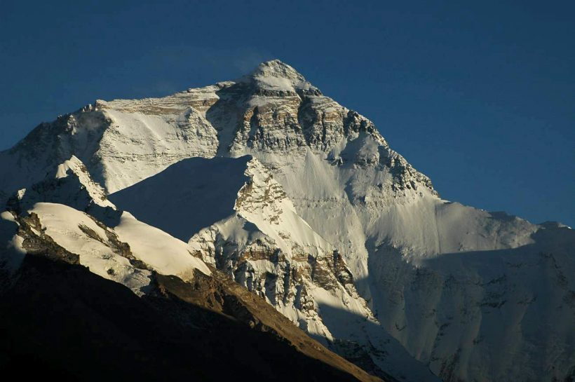 Grasses And Shrubs Are Growing In Himalaya: It Might NOT Be Great