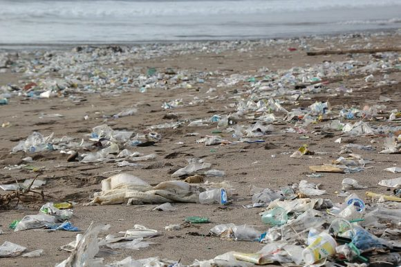 garbage-environment-beach-pollution