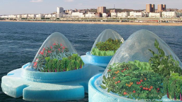 Can Floating Farm Be The Future For Our Food Production