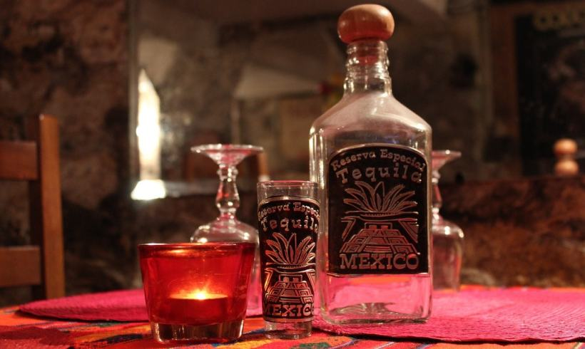 This Is How Your Tequila Can Affect Both Agave And Bat Population