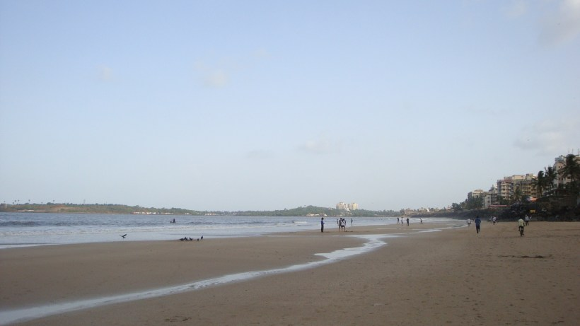 The Story Of Dirty Versova Beach That Turned Into Turtle Nests
