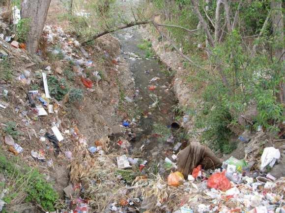 Creek_Water_Pollution