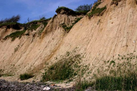Erosion (Wikimedia Commons)