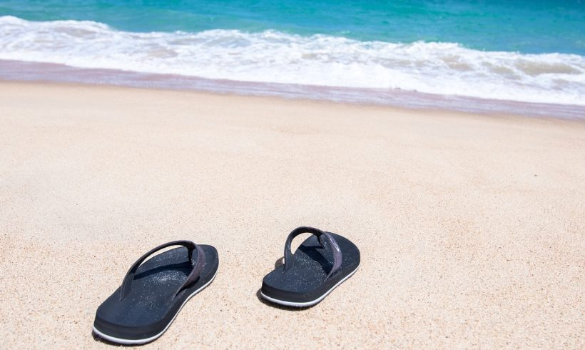 Algae for Everything: Researchers Made Biodegradable Flip Flops