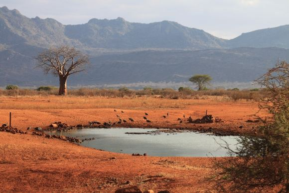 tsavo water mwalua