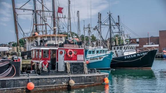 richard-sagredo-qjDolDTiggo-unsplash shrimp ships